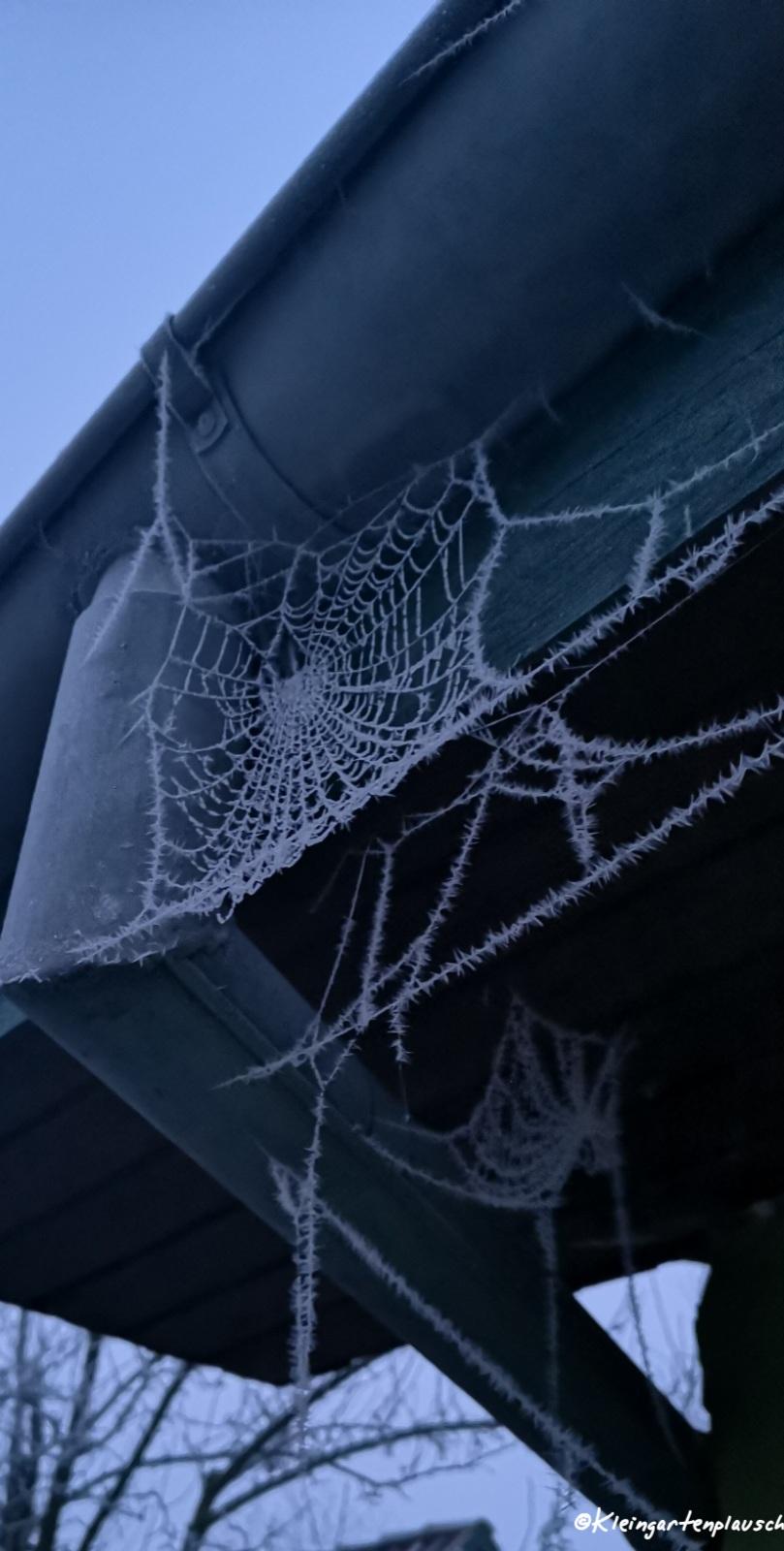 Der Frost zeigt bisher Unsichtbares...