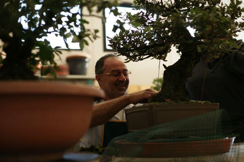 nel sottobosco si muovono i bonsaisti!!!