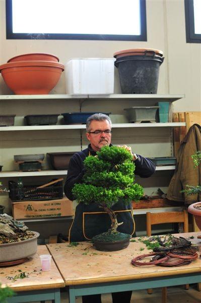Ditemi se non vi sembra che la pianta abbia uno sguardo severo come il proprietario!?