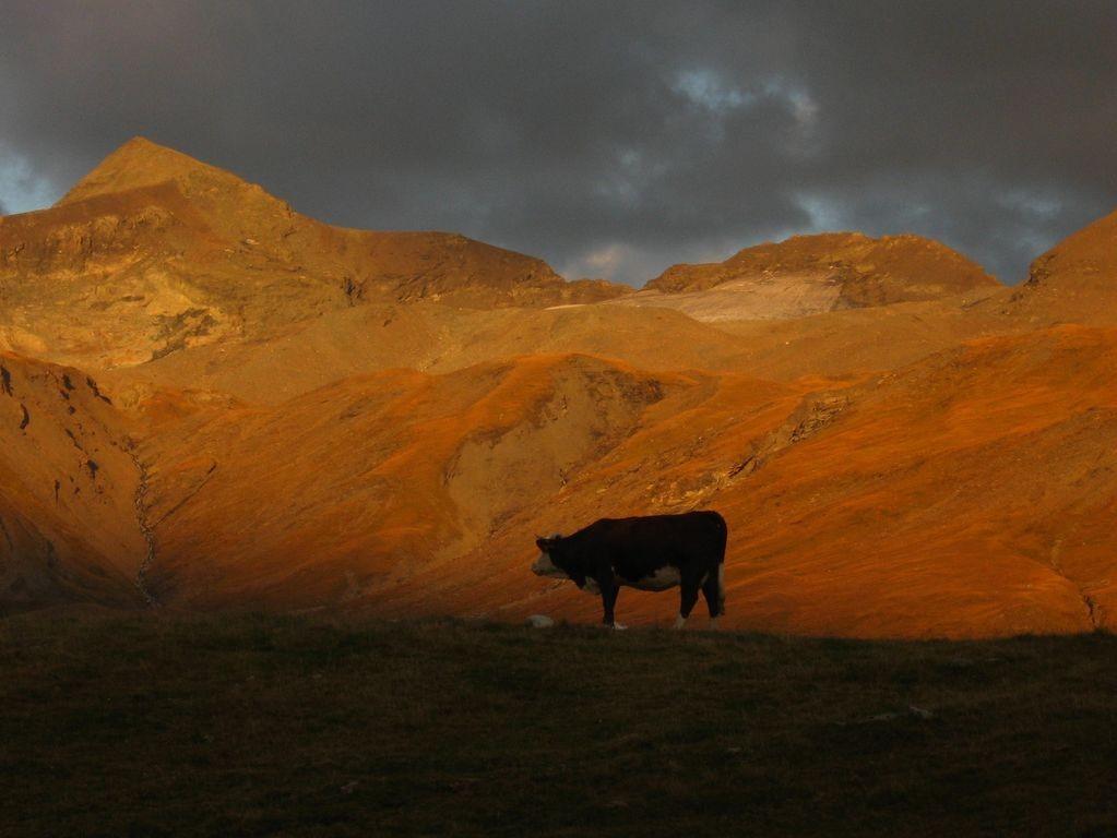 soleil couchant près du refuge de la Femma (Vanoise)
