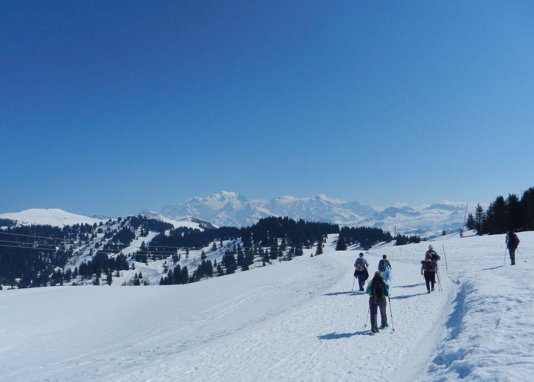 Chaine du Mont Blanc depuis les Saisies