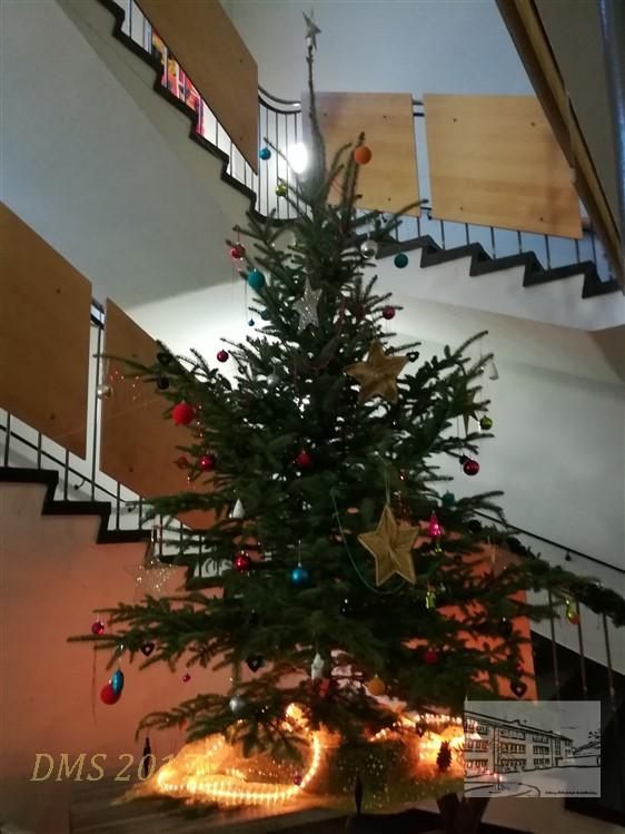 woher kommt der weihnachtsbaum grundschule frohe weihnachten in europa. Black Bedroom Furniture Sets. Home Design Ideas