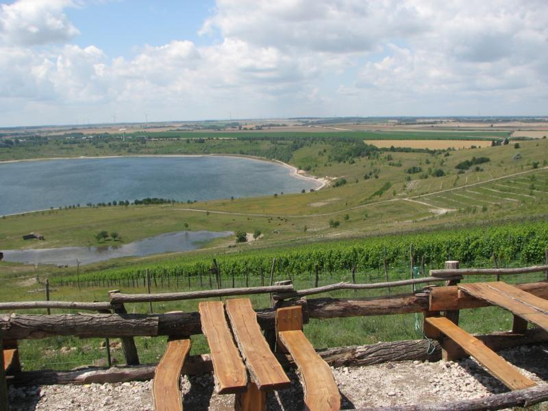 Am Weinberg der Fam. Reifert aus Freyburg kann man sehr schön rasten und hat auch einen sehr schönen Blick von der Hochhalde Klobikau auf den See