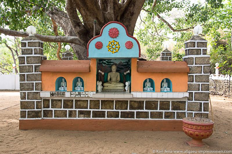 Umzäunung des Boddhibaumes beim Tempel Pidurangala
