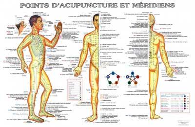 Méridiens et points d'acupuncture Lyon