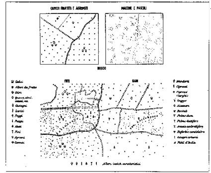 Figura 8.19 - Segni convenzionali utilizzati nelle carte topografiche e corografiche per rappresentare la vegetazione nei suoi vari aspetti
