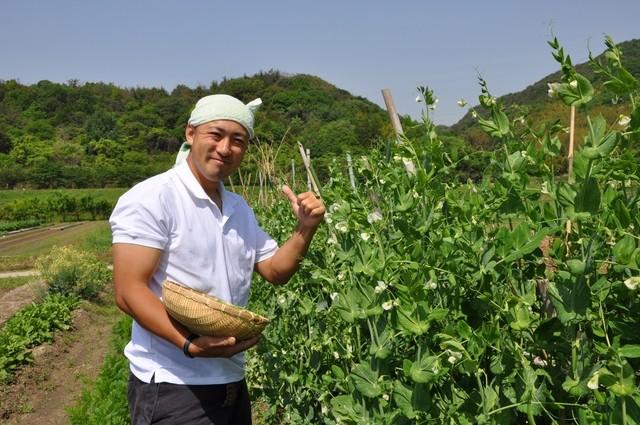 食品6次化に向けた低温除湿乾燥で1次産業に変革を!