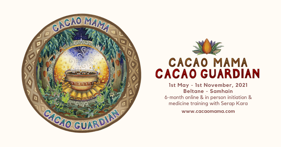 Cacao Guardian · 2021