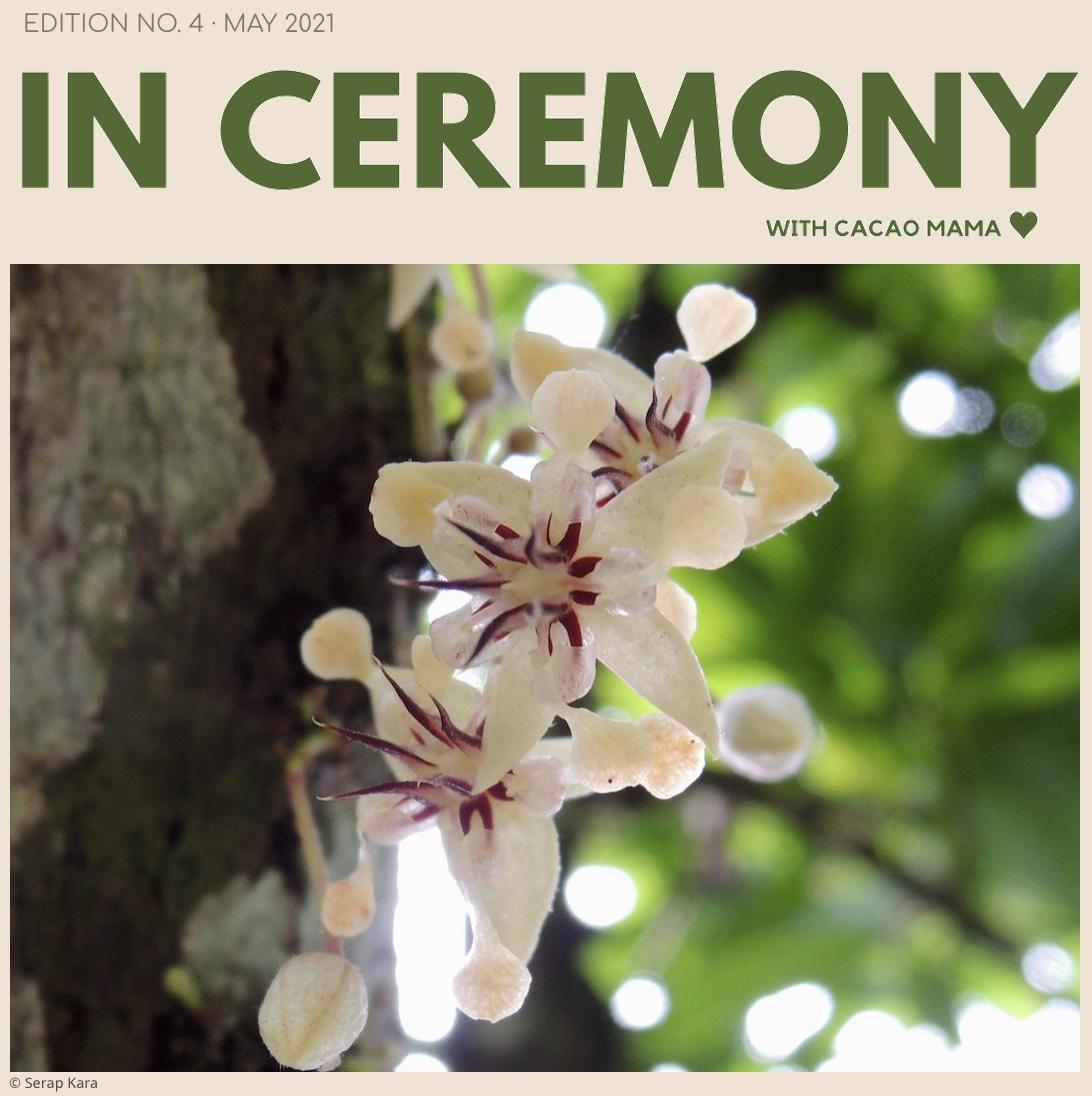 In Ceremony ·  Edition No 4