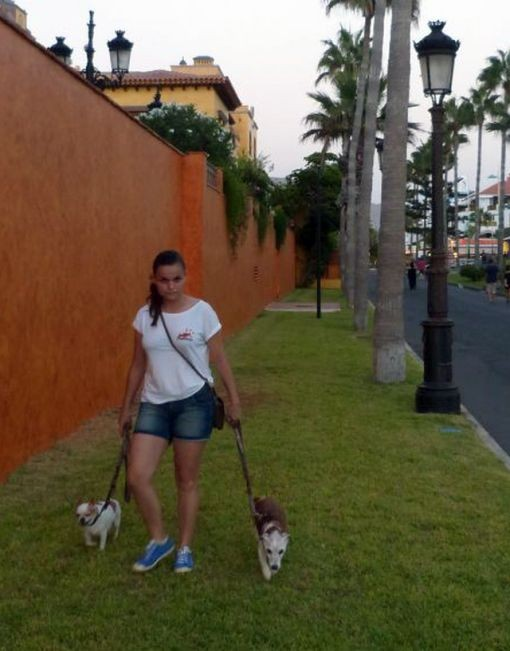 Peques Tenerife Dogsitter - Hundebetreuung