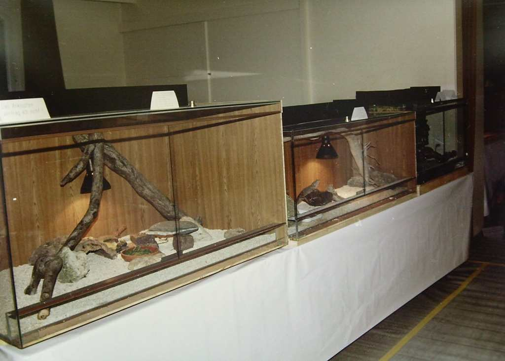1.Ausstellung 1989 Trimbach