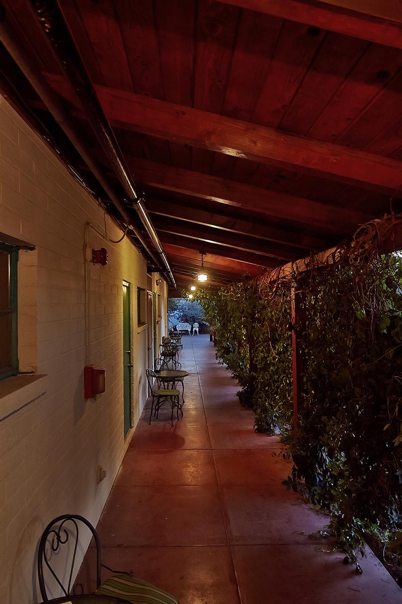 Hinter dichten Ranken an einem Zen Garten liegen die Zugänge zu den Zimmern... (Foto: Christian Düringer)