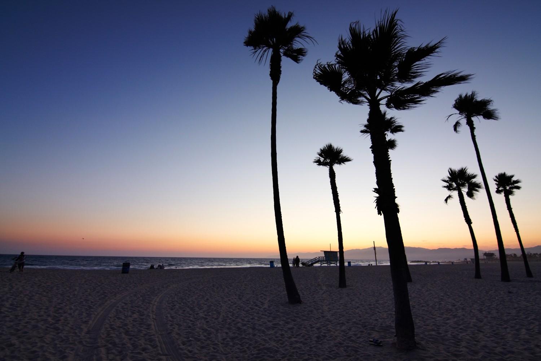 """Im Stadtteil von Los Angeles """"Venice"""" und """"Venice Beach"""" spielt die Folge """"...und der heimliche Hehler""""..."""