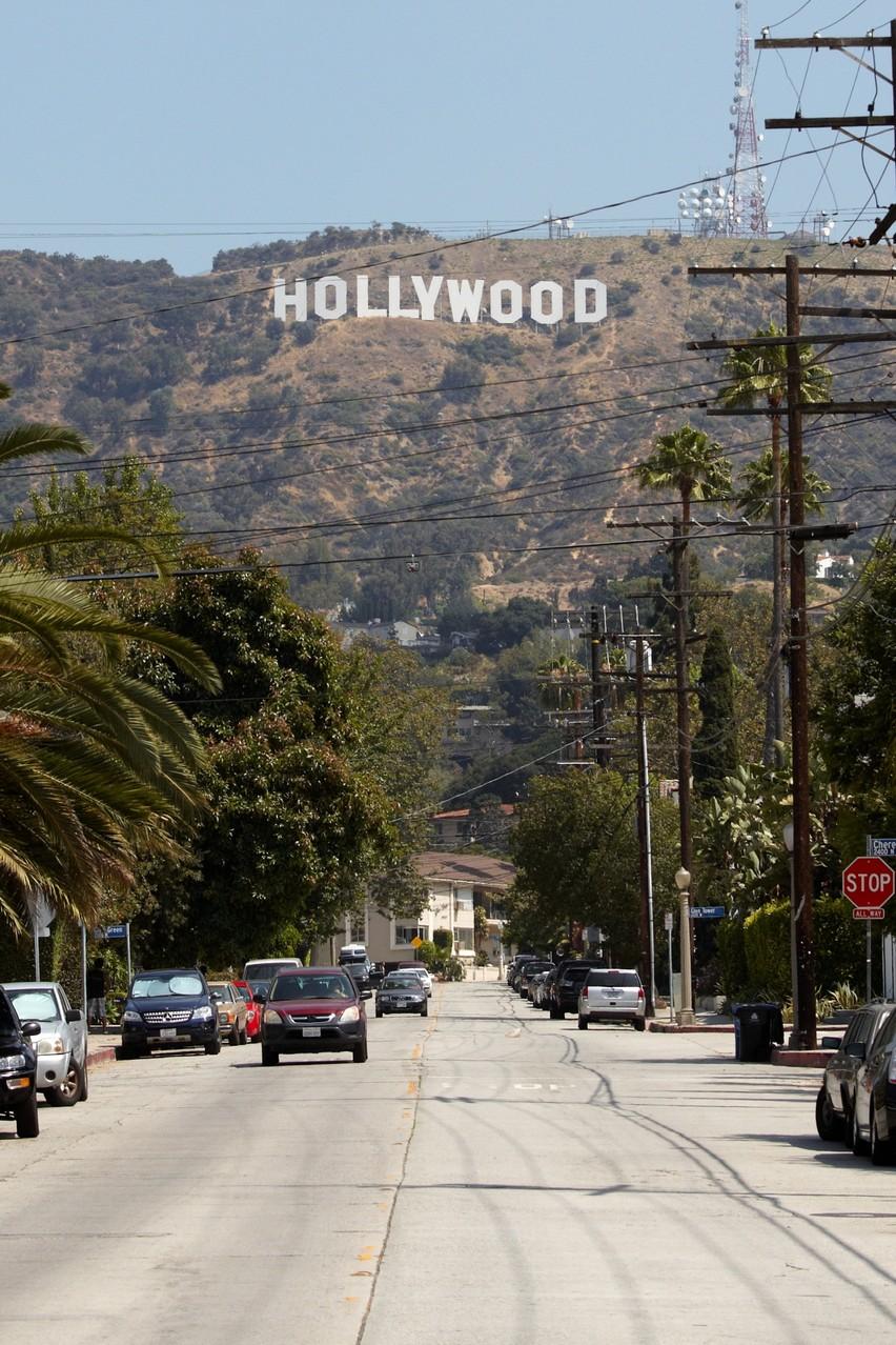 """Hollywood ist Schauplatz zahlreicher Folgen. In """"Schatten über Hollywood"""" steht der berühmte Hollywood-Schriftzug im Fokus, den Peter im Rahmen einer Mutprobe erklimmen muss."""