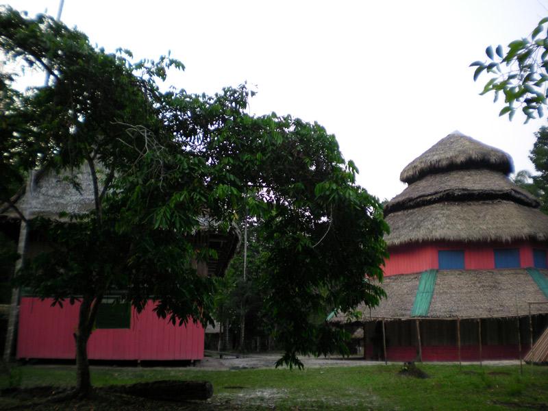 Peru Otorongo