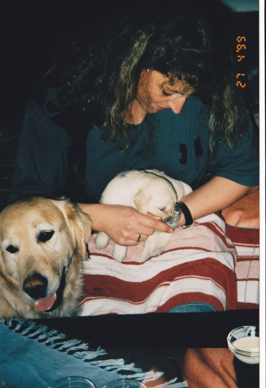 """27.04.1999 Fütterung der """"Raubtiere"""", Sam wartet geduldig..."""