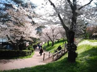Passeggiata del Giappone