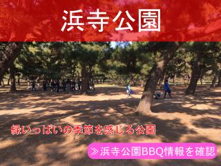 浜寺公園BBQ情報
