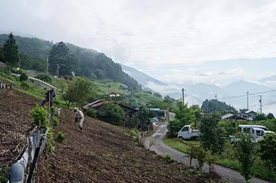 飯田市上村下栗の蕎麦畑