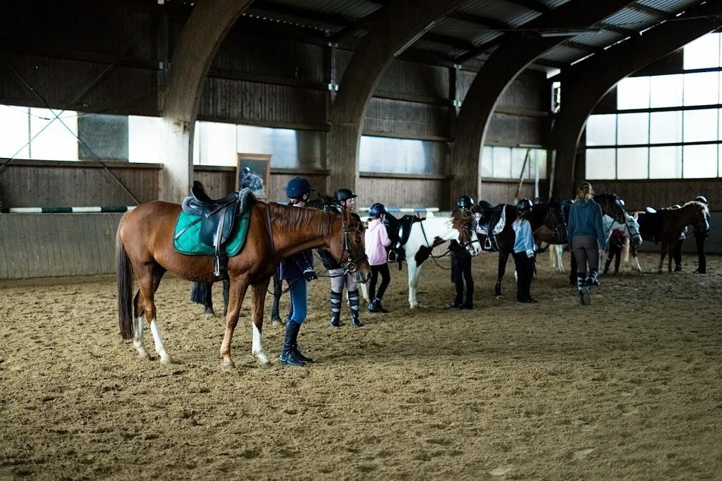 Reiterferien 2021 können starten