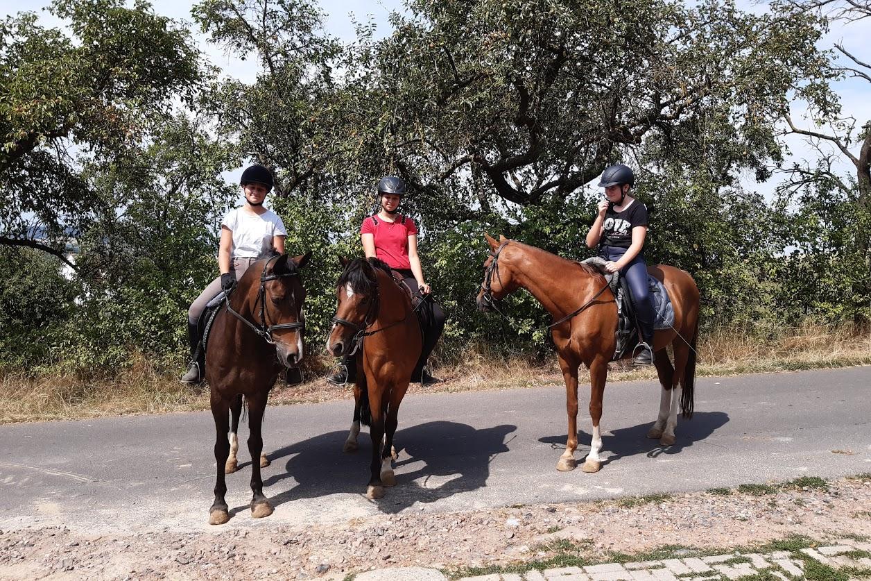 Unklar und doch irgendwie klar - Reiterferien in den Osterferien