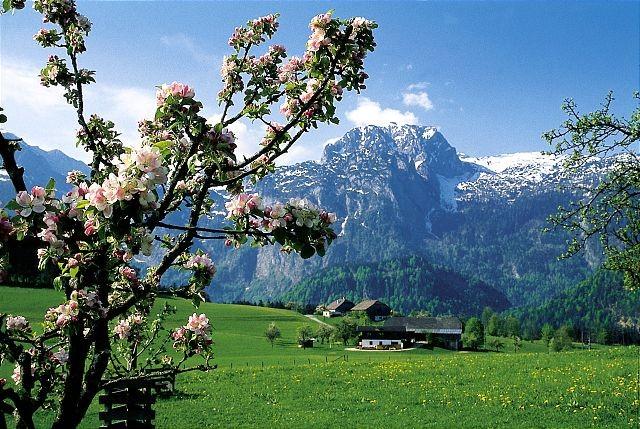 Frühling in Abtenau, Blick auf den Breitstein