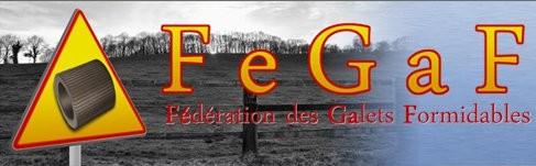 http://www.fegaf.fr/