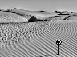 Wüste mit Kreiselschild