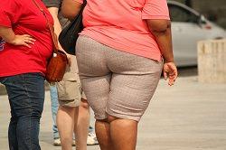 zwei dicke Frauen
