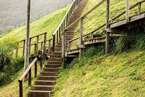 Wege aus Holztreppen kreuzen sich auf einem Rasen