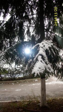 Первый снег. Вид из палаты