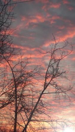 Тревожное небо