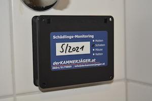 schädlingsbekämpfung monitoring kammerjäger schaben küchenschaben kakerlaken derkammerjäger.at maximilian eder steiermark graz weiz