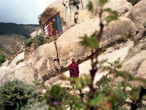 ein Lama umwandert den Koras von Drepung