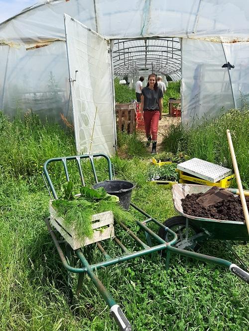 Initiation au jardinage naturel et au sol vivant samedi 14 Août
