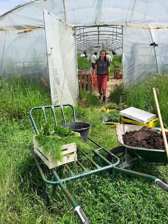 Atelier pratique autour du jardinage naturel mardi 29 Décembre (reporté)