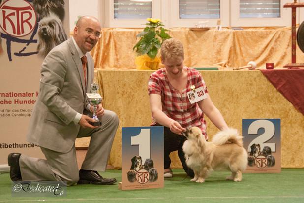 Lexie Best in Show Puppy