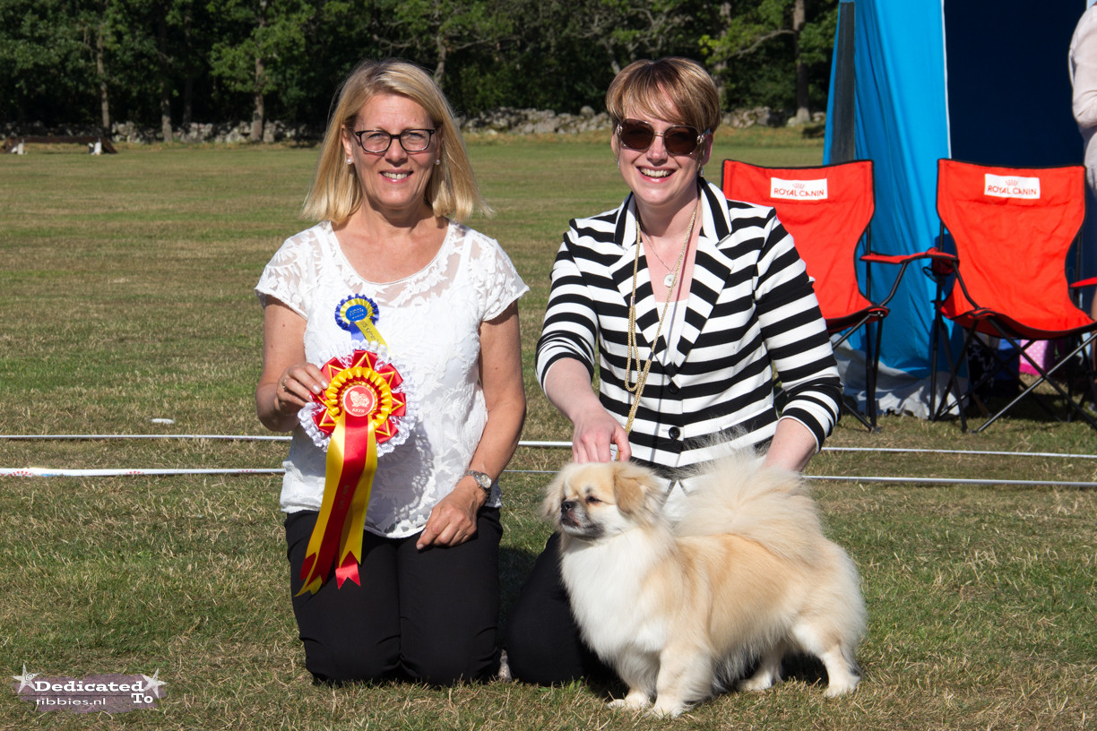 Bristow Best in Show