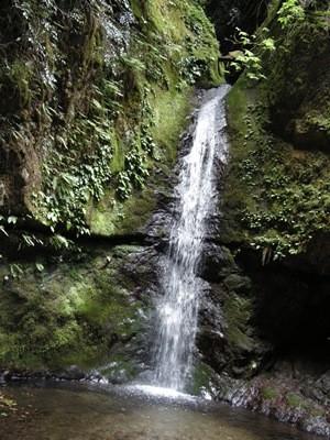 御岳山の滝