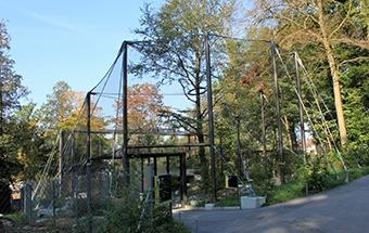 Bild: Uhu- und Schneeeulengehege  Tierpark Dählhölzli, Bern