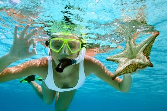 Snorkeling...discover great undersea....