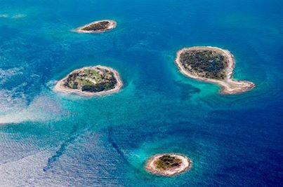 excursion aux iles Brioni: bateau à 300 m  de votre apt sur la riva