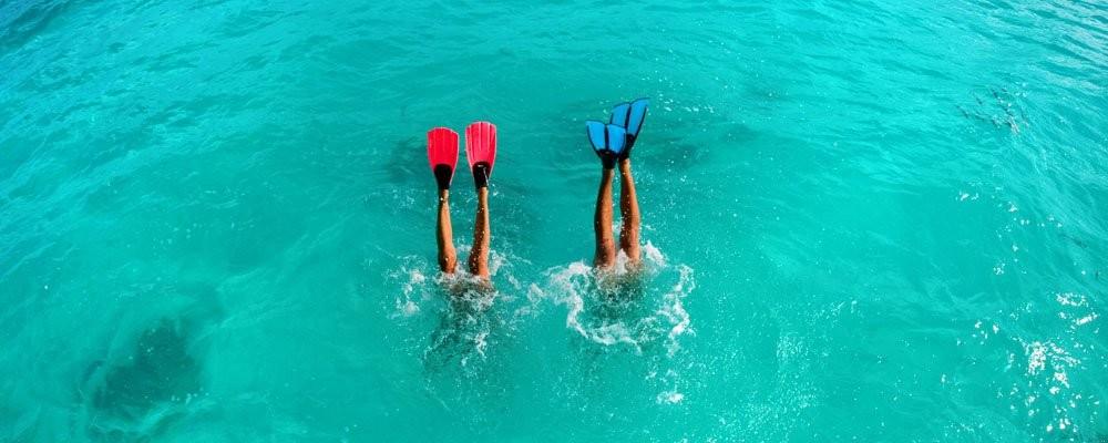 Plongez! les fons marins sont superbes! On vous fournit masque et tuba!