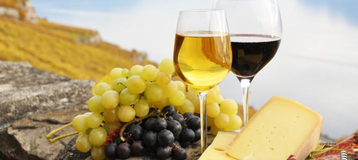 région viticole très riche...