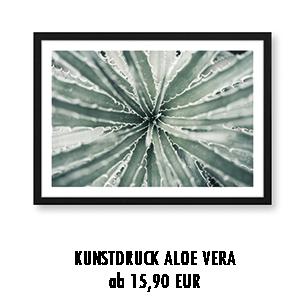 Artprint Aloe Vera kaufen
