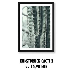"""Artprint """"Kaktus"""" kaufen"""