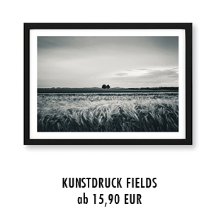 "Artprint ""fields of gold"" kaufen"