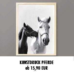 Pferde Poster kaufen