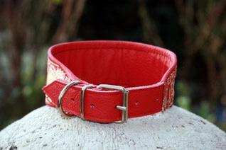 Buckle closure collar