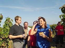 Weinwanderung 2007